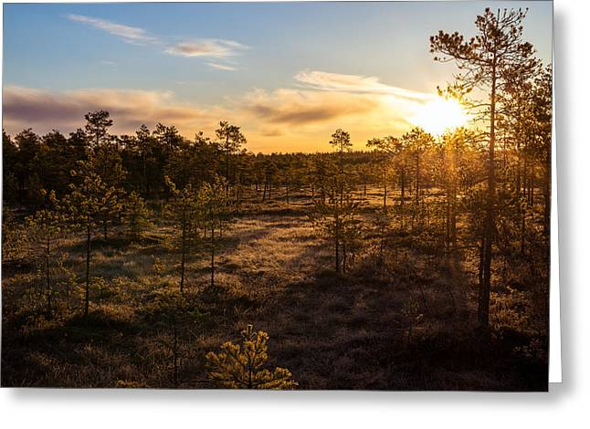 Sunrise At Linnaistensuo Greeting Card by Janne Mankinen
