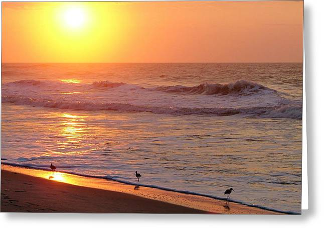 Sunrise At Ocean Isle Greeting Card