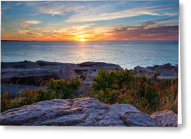 Sunrise At Otter Cliffs Greeting Card by Darylann Leonard Photography