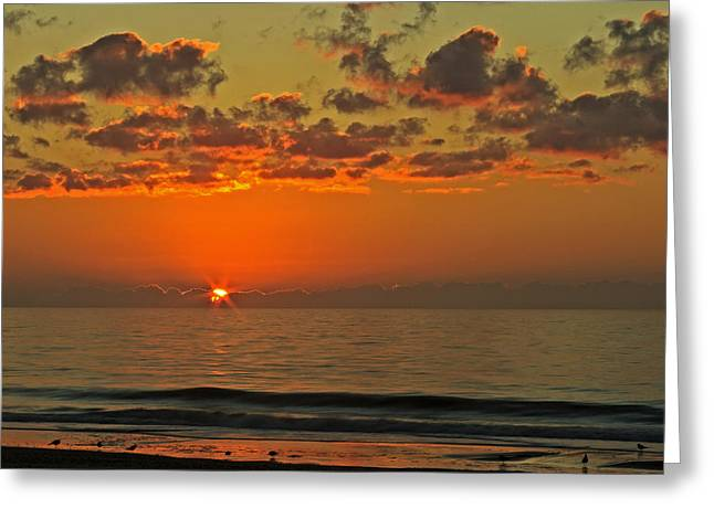 Sunrise At The Beach V Greeting Card