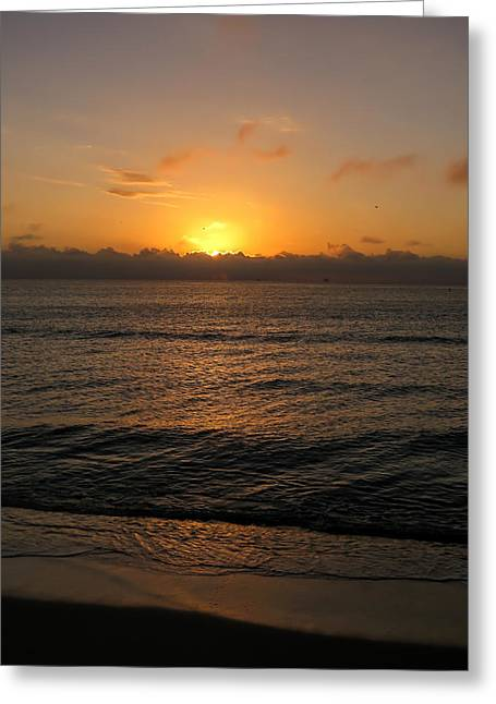 Sunrise At The Beach Greeting Card by Zina Stromberg