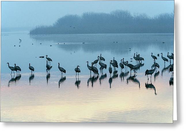 Sunrise Over The Hula Valley Israel 5 Greeting Card