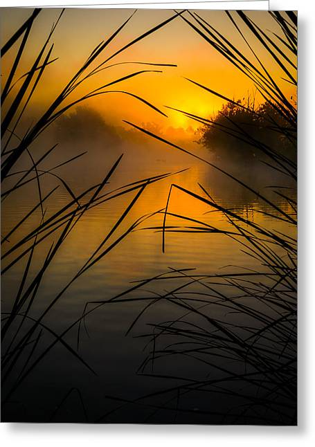 Sunrise At The Sepulveda Dam Wildlife Reserve Greeting Card