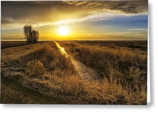 Sunrise At The Wildlife Refuge Greeting Card by David Soldano