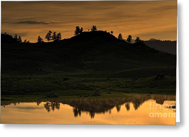 Greeting Card featuring the photograph Sunrise Behind A Yellowstone Ridge by Bill Gabbert