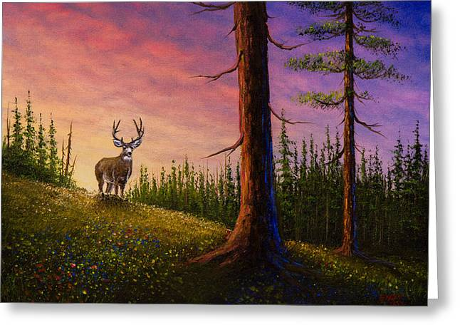 Sunrise Buck Greeting Card by C Steele