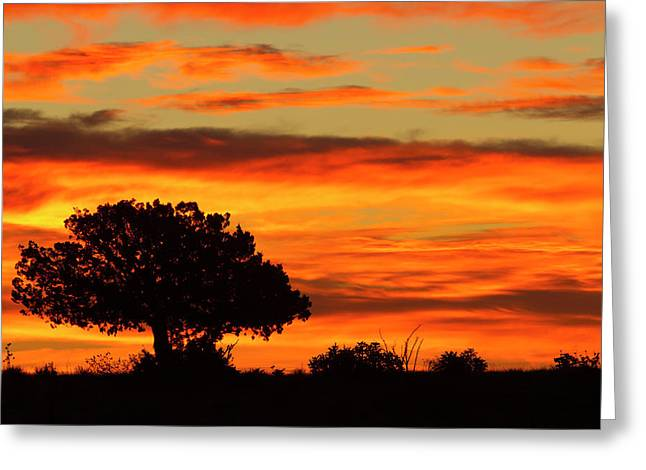 Sunrise, Cimarron, New Mexico, Hwy 64 Greeting Card by Maresa Pryor