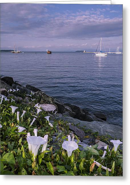Sunrise-clouds-lake Champlain-vermont Greeting Card by Andy Gimino