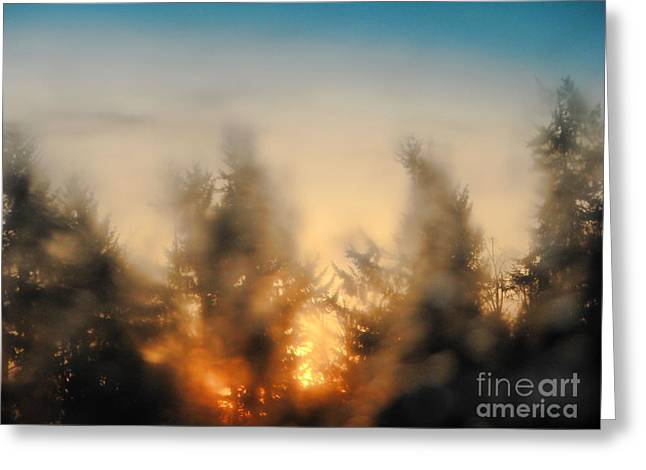 Sunrise Dream Greeting Card