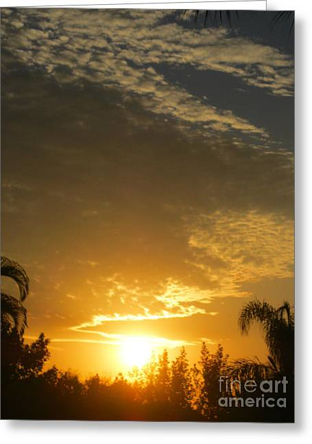 Sunrise. Florida Greeting Card by Oksana Semenchenko