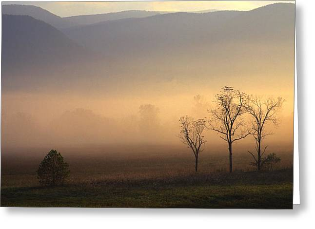 Sunrise In Cades Cove Greeting Card by Wendell Thompson
