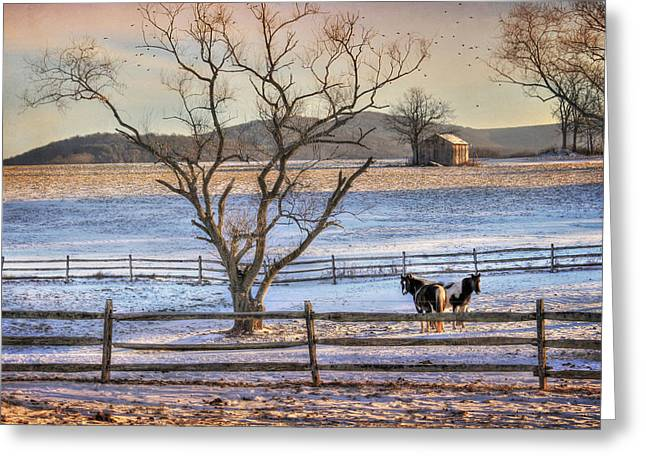 Sunrise In Hegins Greeting Card by Lori Deiter