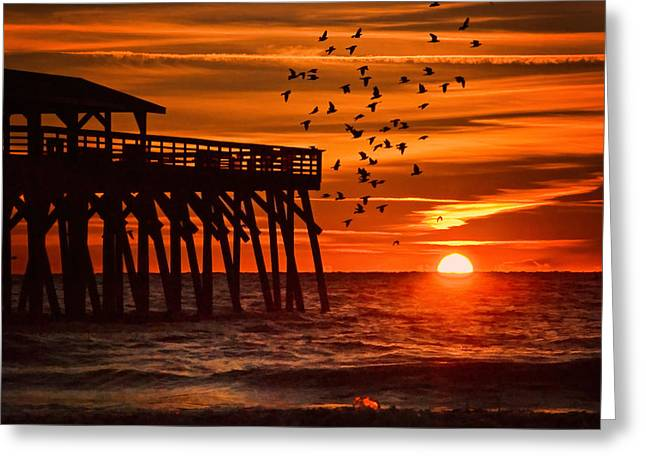 Sunrise In Myrtle Beach With Birds Flying Around The Pier Greeting Card by Vizual Studio