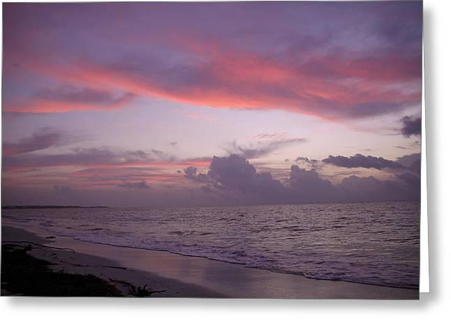 Sunrise In Riviera Maya Greeting Card by Dave Dos Santos