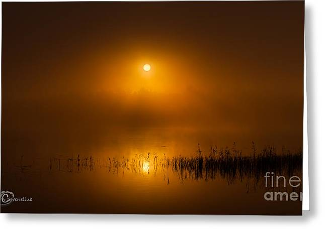 Sunrise In The Fog Greeting Card