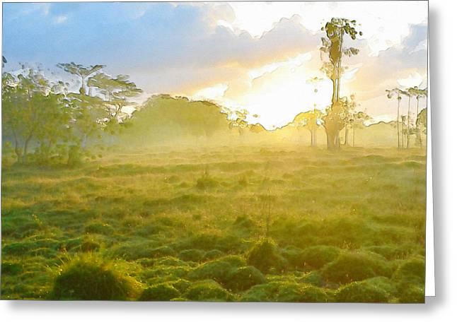 Sunrise In The Wilderness Greeting Card by Anton Joseph