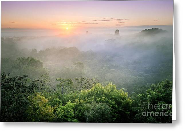 Sunrise In Tikal Greeting Card