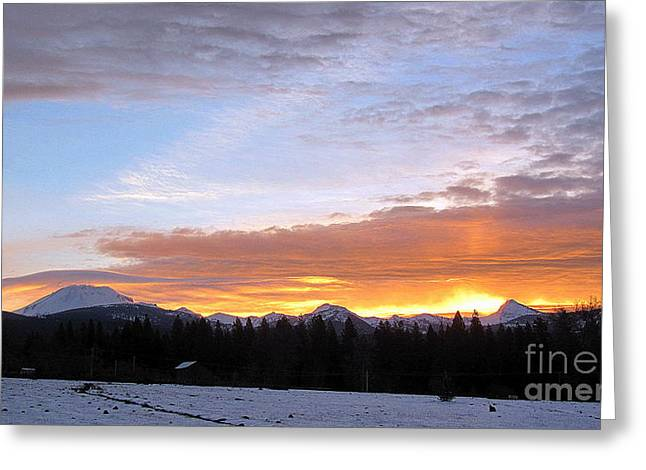 Sunrise In Viola Greeting Card by Irina Hays