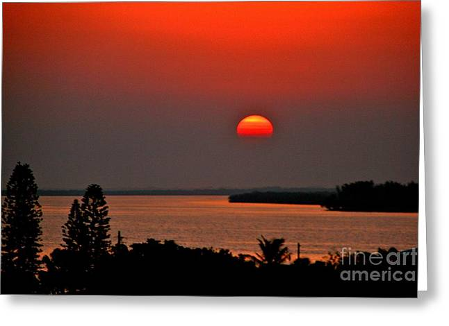 Sunrise Greeting Card by Joan McArthur