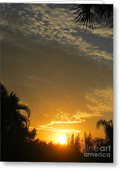 Sunrise. March 2014 Greeting Card