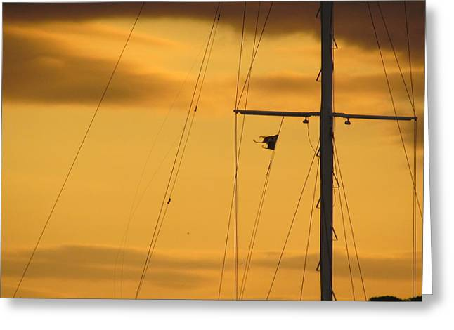 Sunrise Mast Cables Greeting Card