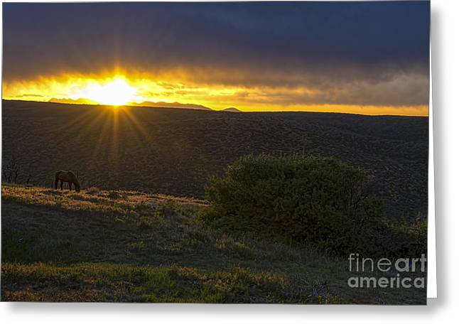 Sunrise Mesa Verde Greeting Card by Keith Ducker