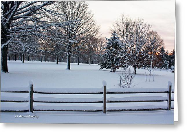 Greeting Card featuring the photograph Sunrise On A Snowy Morning by Ann Murphy