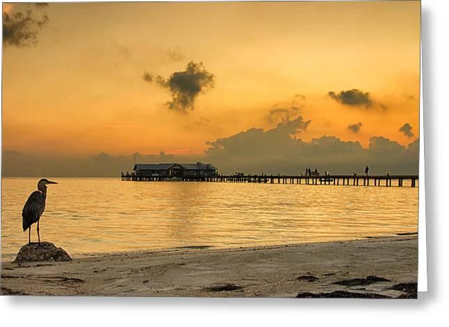Sunrise On City Pier Greeting Card