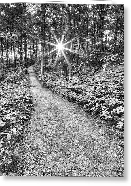 Sunrise On Empire Bluff Trail  Greeting Card