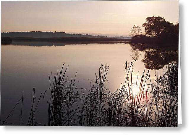 Sunrise On Meadow Greeting Card by Kathi Mirto