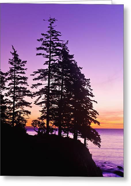 Sunrise On Monashka Bay At Ft Greeting Card by Michael DeYoung