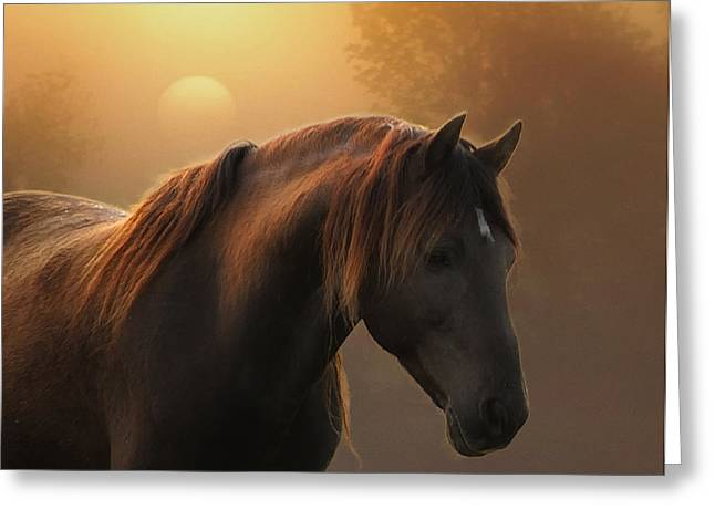 Sunrise On Planet Earth Greeting Card by Ron  McGinnis