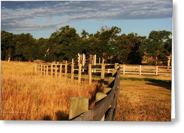 Sunrise On The Fence Greeting Card