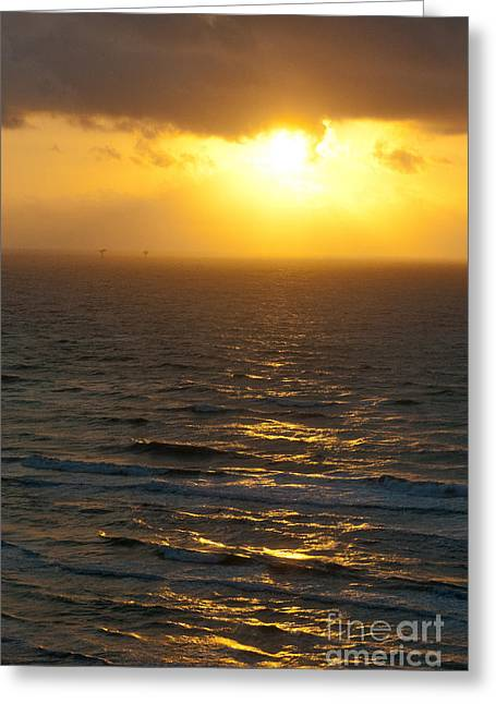Sunrise On The Gulf Greeting Card