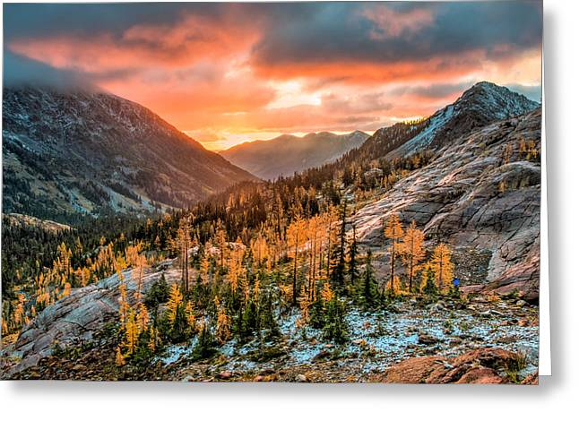 Sunrise On The Larches Greeting Card