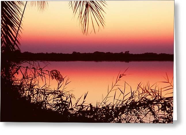 Sunrise On The Okavango Delta Greeting Card by Stefan Carpenter