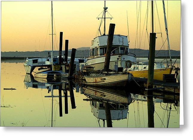 Sunrise On The Petaluma River Greeting Card by Bill Gallagher