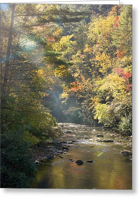 Greeting Card featuring the photograph Sunrise On The Telico River by Robert Camp