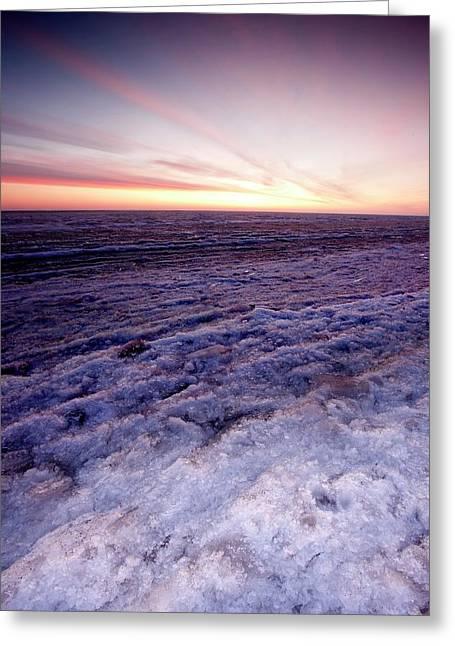 Sunrise Over A Frozen Beaufort Sea Greeting Card by Chris Madeley