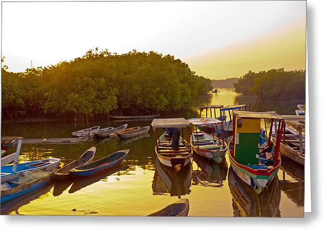 Sunrise Over Gambian Creek Greeting Card