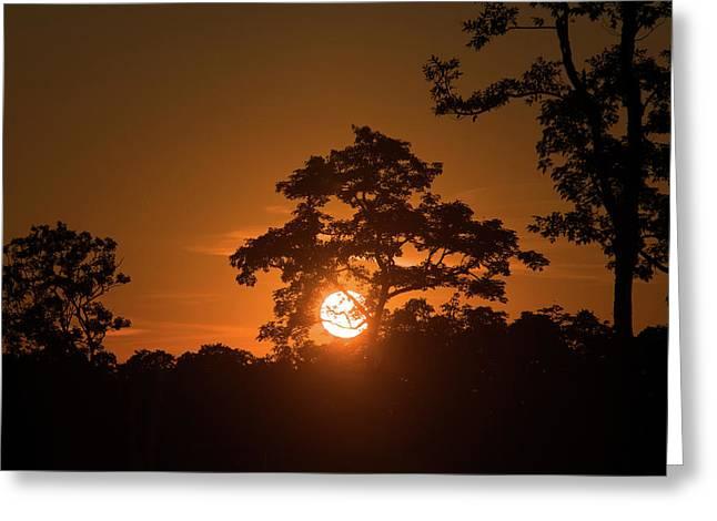 Sunrise Over Kaziranga National Park Greeting Card