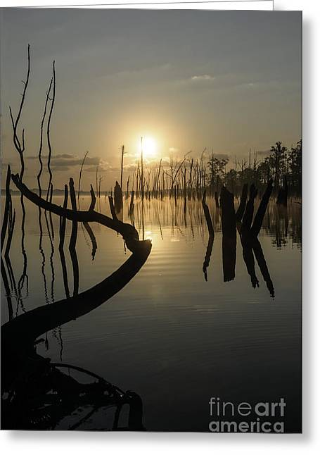 Sunrise Over Manasquan Reservoir II Greeting Card