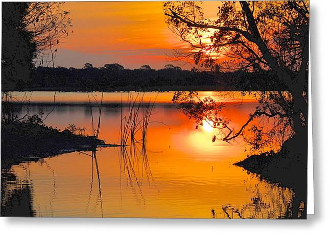 Sunrise Over Orlando Wetlands Greeting Card by AnnaJo Vahle