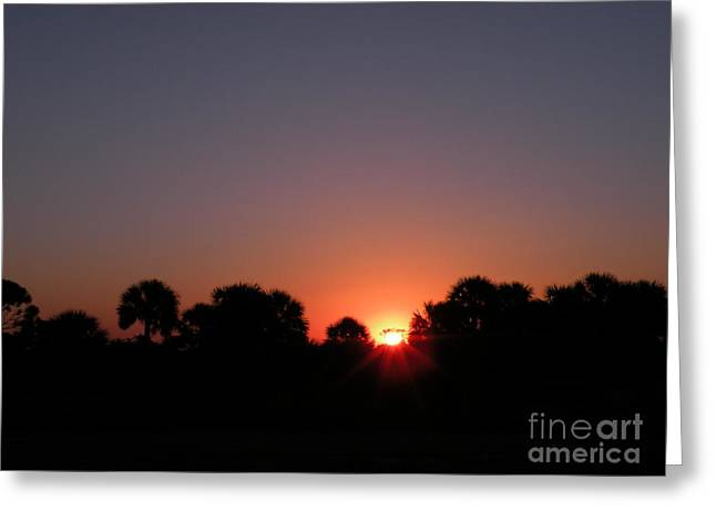 Sunrise Over St Joseph Bay Greeting Card by Lora Duguay