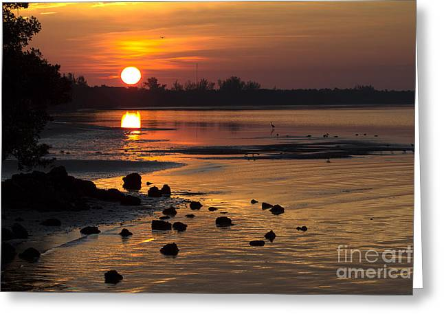 Greeting Card featuring the photograph Sunrise Photograph by Meg Rousher