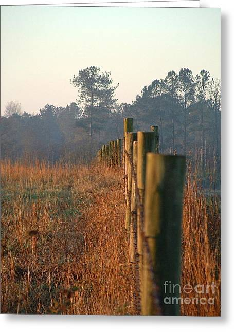 Sunrise Post Greeting Card by Reid Callaway