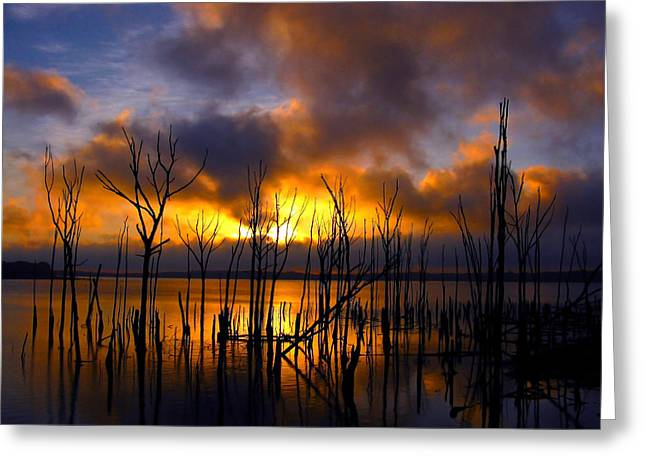 Greeting Card featuring the photograph Sunrise by Raymond Salani III
