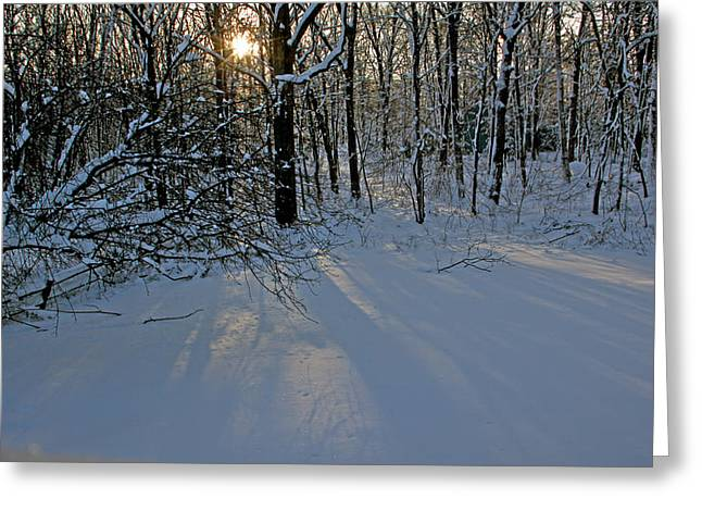 Sunrise Reflected On Snow Greeting Card