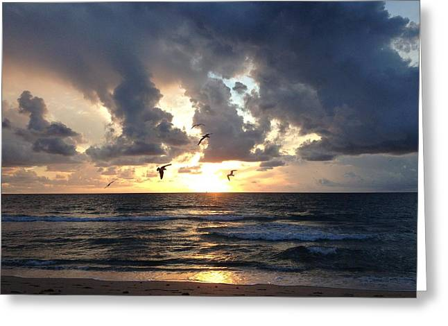 Sunrise Seagulls Greeting Card
