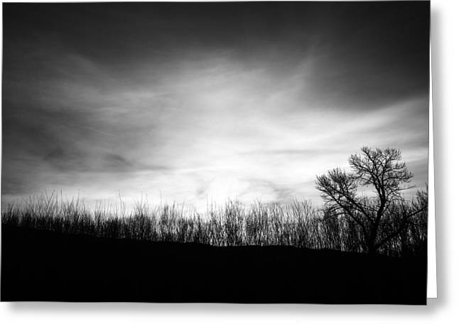 Sunrise Silhouette In Black And White Greeting Card